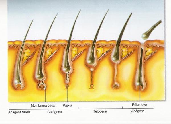 extensão de cílios fio a fio